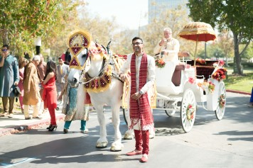 horse-carriage-silvy-chirag-indian-wedding