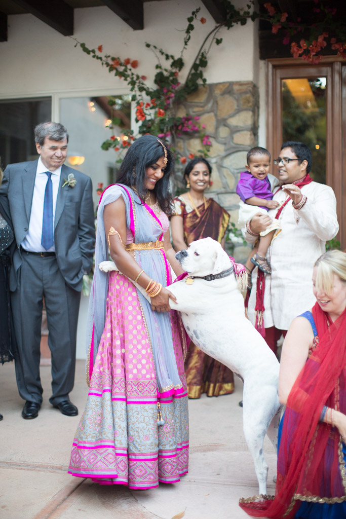 The bride dancing with the groom's dog