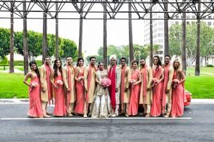 Indian wedding Hindu ceremony photos