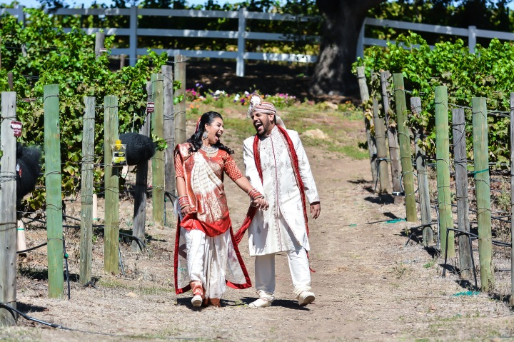 Indian bride and groom enjoying the vineyard photoshoot before their Hindu wedding ceremony.