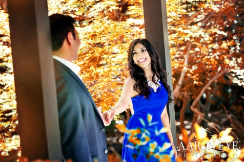 Descanso-Gardens--Kevin-Megha-Indian-wedding-venue-Descanso-Gardens